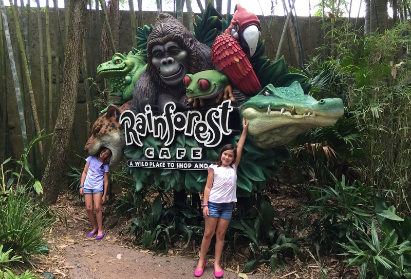 na entrada do Rainforest Cafe do Animal Kingdom
